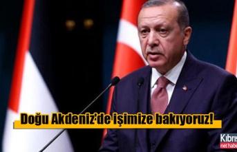 Erdoğan: Doğu Akdeniz'de işimize bakıyoruz!