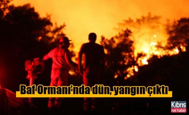 Baf Ormanı'nda dün, yangın çıktı