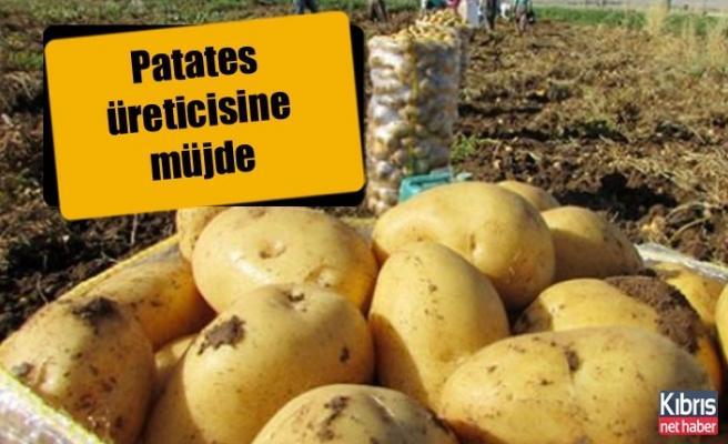 Patates üreticilerine 161 bin TL tazminat