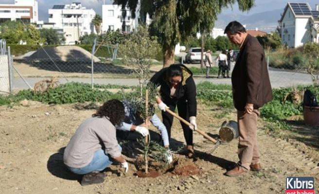 LTB Çalışanları Yeşil Alanlara Fidan Dikti