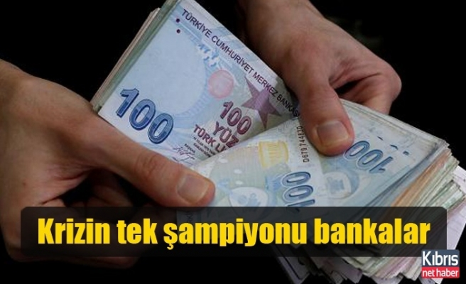 Krizin tek şampiyonu bankalar
