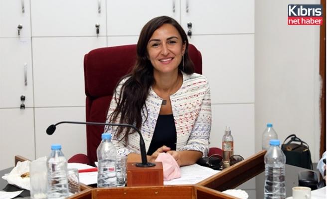Meclis İdari, Kamu Ve Sağlık İşleri Komitesi toplandı