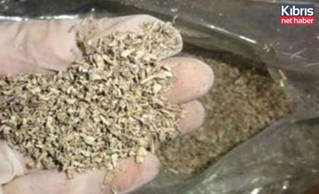 Kanunsuz uyuşturucu madde  ziraatı ve tasarrufu