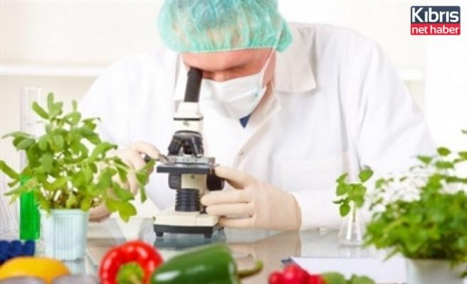 Gıda ve analiz sonuçlarına göre 3 yerli ürün imha edildi