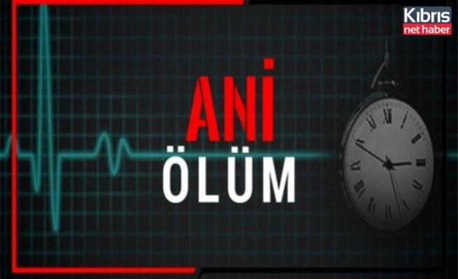 Çatalköy'de ani ölüm