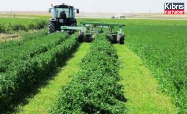 Devlet Üretme Çiftliklerinde yonca satışı yapılacak