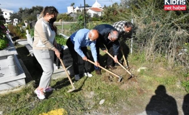 Girne Belediyesi, Karaoğlanoğlu mezarlığına 100 fidan dikti