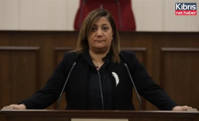 Manavoğlu hükümeti eleştirdi