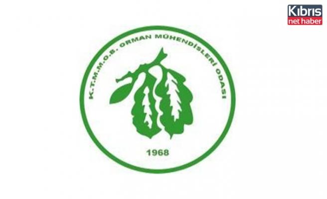 Orman Mühendisleri Odası Başkanı İyigün: Mevzuat güncellenmeli