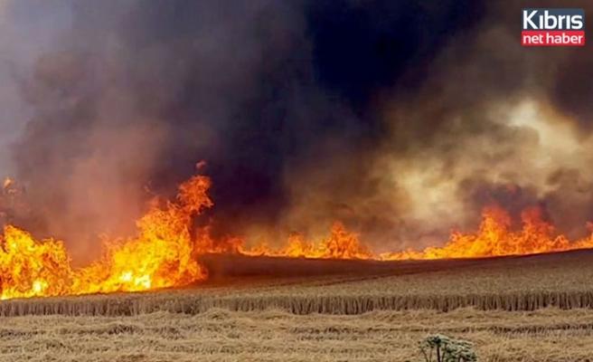 Biçerdöverden atılan kıvılcım sonucu yangın meydana geldi