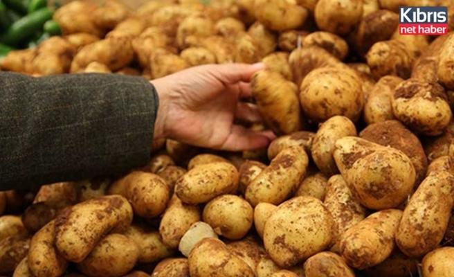 Tük Sofralık patates alımlarının 18 Mayıs Pazartesi günü başlayacağını duyurdu