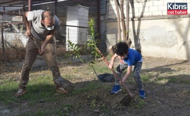 """""""Umut Bahçesi""""Nin Ağaçlandırılmasına Devam Ediliyor"""