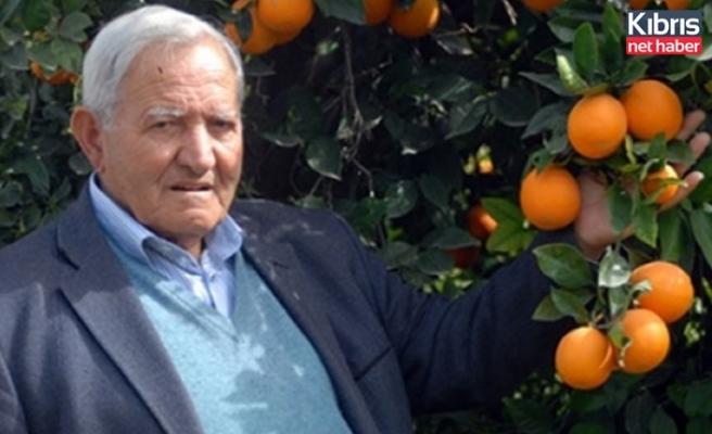 Narenciye Üreticileri Birliği CYPFRUVEX'in hasat sonu için şenlik yapılmasını eleştirdi