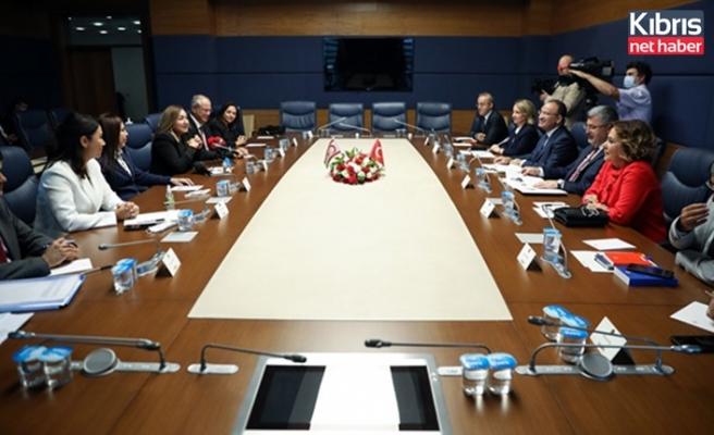 Hukuk, Siyasi İşler, Dış İlişkiler Komitesi, TBMM Anayasa Komisyonu ile toplantı yaptı