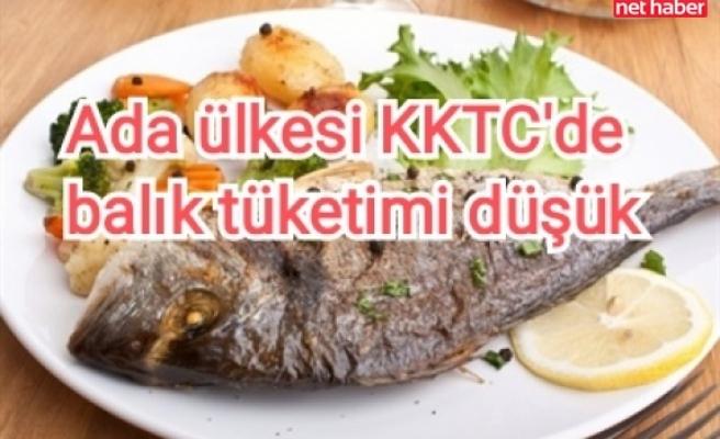 Ada ülkesi KKTC'de balık tüketimi düşük