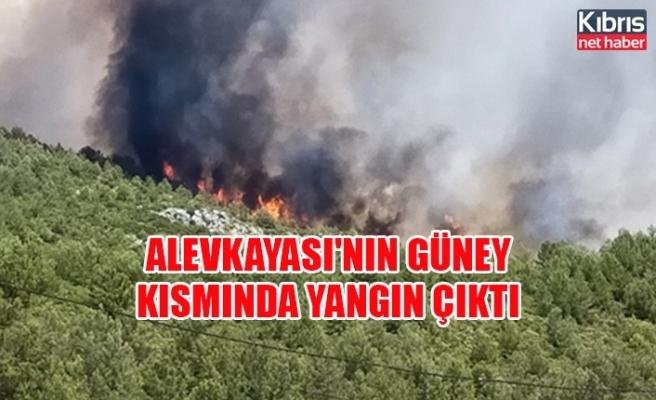 Alevkayası'nın güney kısmında yangın çıktı