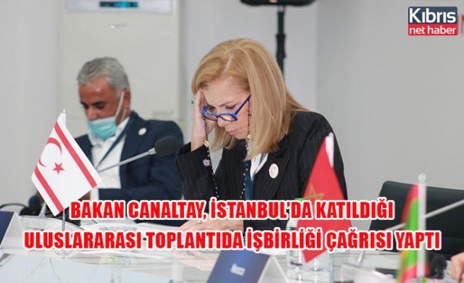Bakan Canaltay, İstanbul'da katıldığı uluslararası toplantıda işbirliği çağrısı yaptı