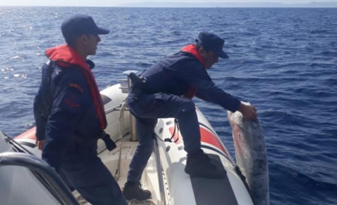 Denizde batan tekneden 1,4 ton uyuşturucu çıktı