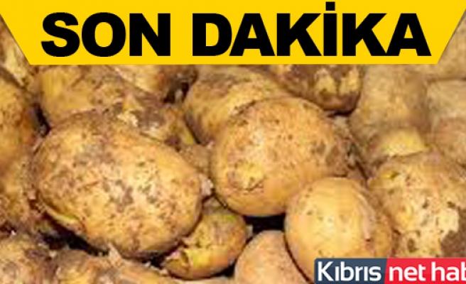 Güney Kıbrıs 3 ülkede patetes ithal edecek