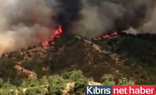 Güney Kıbrıs'ta Yangın Sürüyor