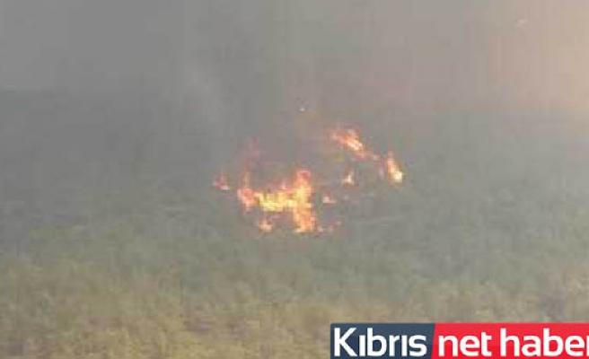 Güney'deki Yangın Devam Ediyor