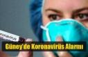 Güney'de Koronavirüs Alarmı