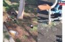 Sokağa çıkma yasağı sırasında parklarda vandallık