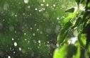 En çok yağış Ozanköy'e düştü