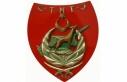 Kıbrıs TMT Mücahitler Derneği'nden iki devletli...