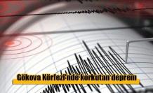 Gökova Körfezi'nde 4.6 büyüklüğünde deprem