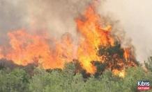Larnaka'da yangın!