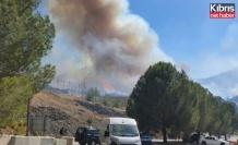 Güney Kıbrıs'taki Yangında Bazı Evler ve Geniş Bir Ormanlık Alan Yandı