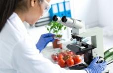 Elma ve cennet meyvesi limit üstü bitki koruma ürünü tespit edildi
