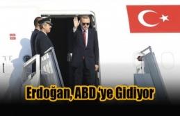 Erdoğan Beyaz Saray'da Trump İle Görüşecek