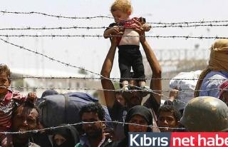 2015'te 2,5 Milyon Suriyeli Türkiye'ye Sığındı
