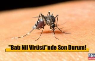 """Batı Nil Virüsü""nde Son Durum!"