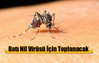 Batı Nil Virüsü İçin Toplanacak