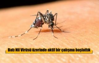 Batı Nil Virüsü üzerinde aktif bir çalışma...