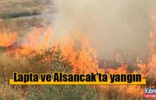 Lapta ve Alsancak'ta yangın
