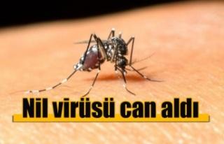 Nil virüsü can aldı