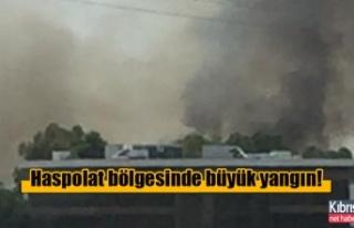 Haspolat bölgesinde büyük yangın!