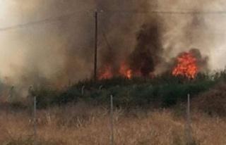 Haspolat'taki yangına müdahale sürüyor