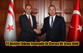 TC Dışişleri Bakanı Çavuşoğlu ile Özersay...