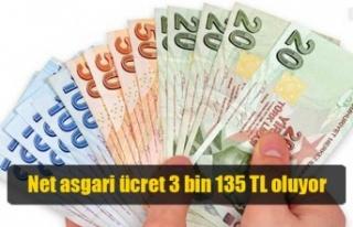 Net asgari ücret 3 bin 135 TL oluyor