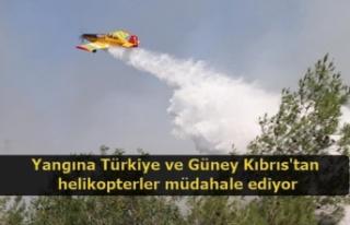 Yangına Türkiye ve Güney Kıbrıs'tan helikopterler...