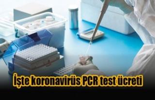 İşte koronavirüs PCR test ücreti