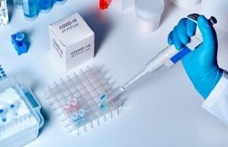 Türkiye'de yurt dışına gidecekler için PCR...