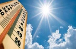 Kavurucu sıcaklar etkili oluyor
