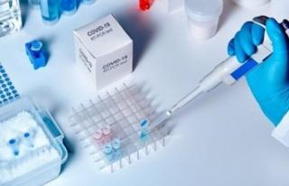 YDÜ, hastanesi'nde Covid-19 PCR akademisi gerçekleştirildi