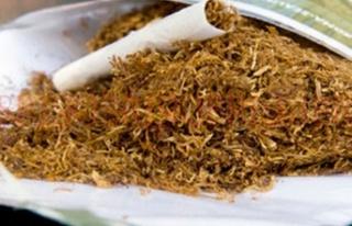 Kaçak tütün'e yasal işlem